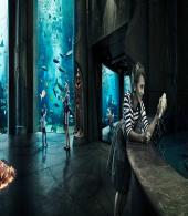 Atlantis The Palm - Lost Chamber & Aquaventure